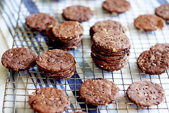 Шоколадное печенье в духовке рецепты