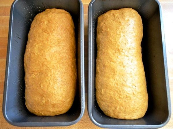 Помещаем тесто в форму