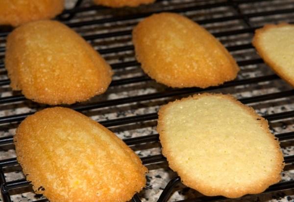 Форма для печенья мадлен