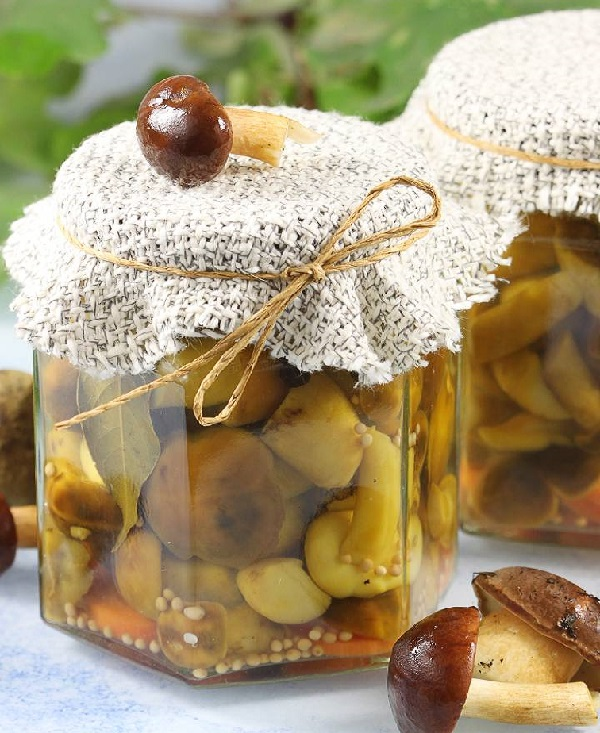 Маслята маринованные на зиму рецепты без стерилизации