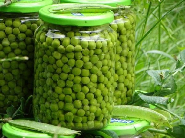 Законсервировать зеленый горошек в домашних условиях рецепт