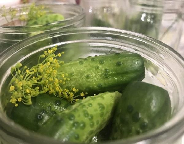 Рецепт маринованных огурцов с семенами горчицы