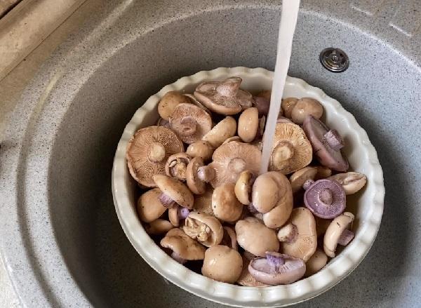 Грибы белые маринованные рецепт приготовления на зиму
