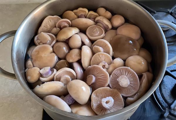 Рецепт мариновать грибы на зиму в банках